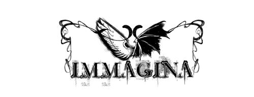 Logo Definitivo di Immagina